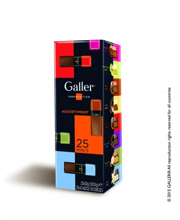 Galler Box 25 mini repen