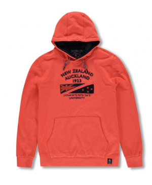 New Zealand Auckland heren hoodie