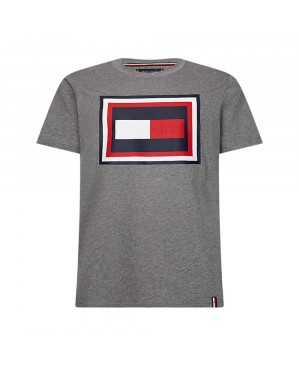 Tommy Hilfiger Heren T-shirt